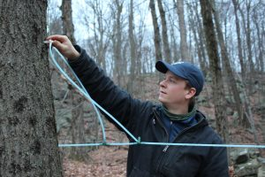 A more contemporary method of tapping sugar maples currently being used by our son Curtis at Grape Hollow Farm in Holmes, NY